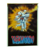 Poster Taekwondo